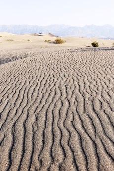 Death Valley, Mesquite Flat Sand Dunes