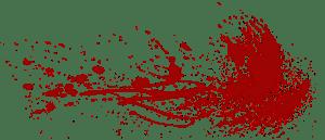 sztuki walki iaijutsu iaido jujitsu - jak się zapisać, jaką szkołę wybrać 1