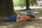 子ども転倒の写真