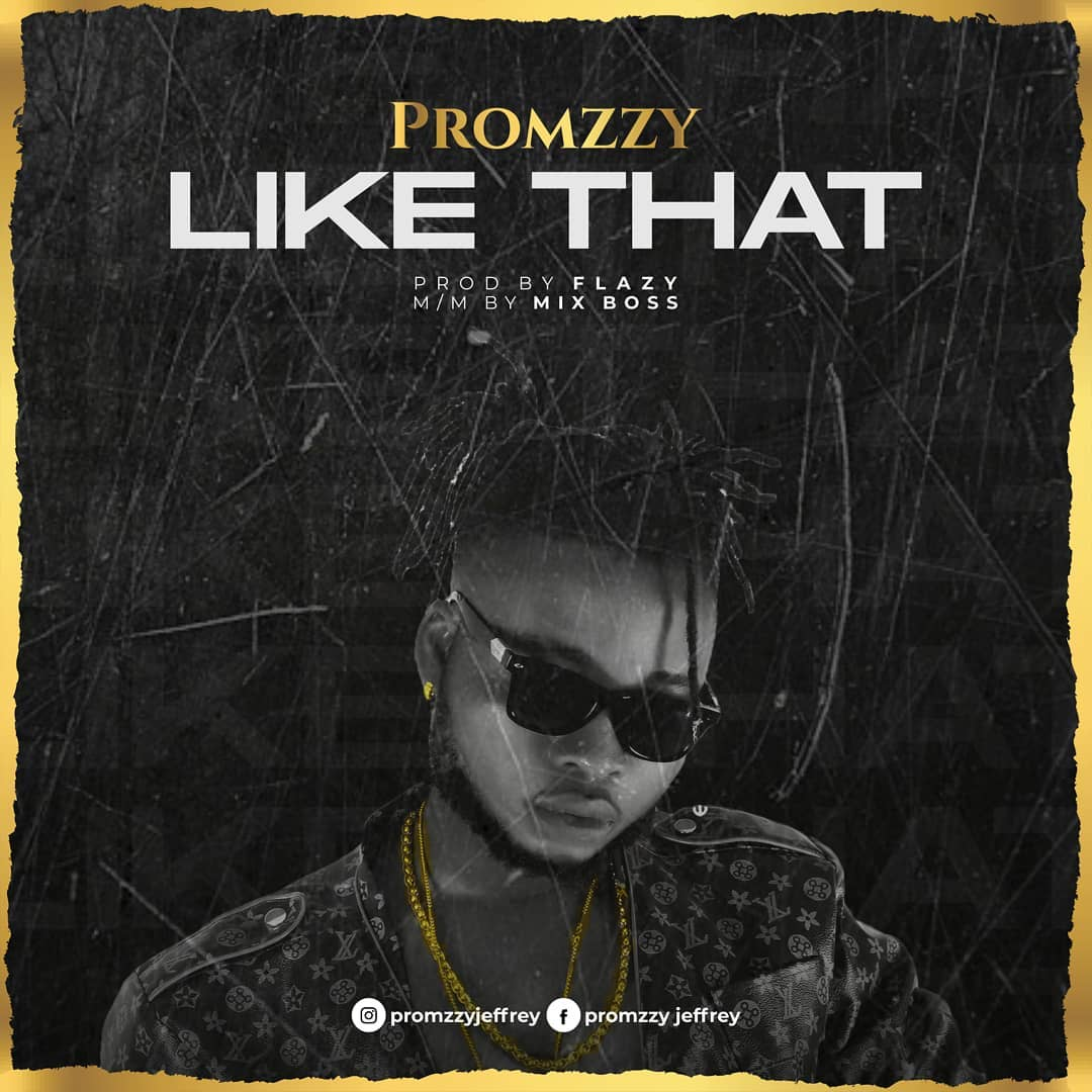 Download Music: Promzzy – Like That