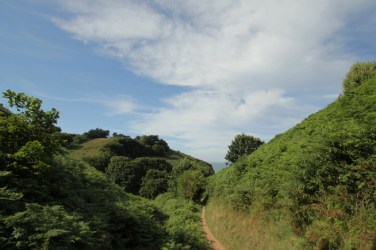 Jersey cliff path