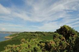 Jersey grillige kustlijn