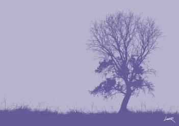 16. Silhouet - mistletoe