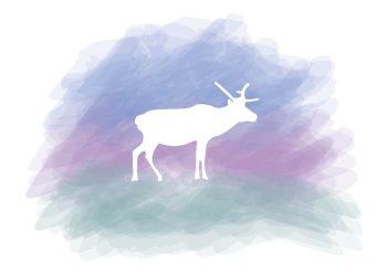 13. Surreal - deer