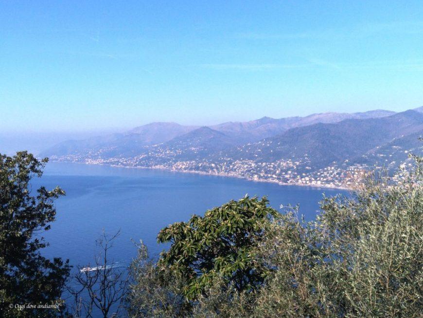 Panorama da San Rocco di Camogli