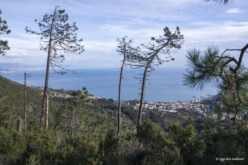 Il panorama su Arenzano