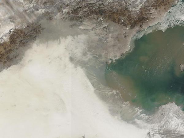 Crediti immagine: NASA/Terra - MODIS