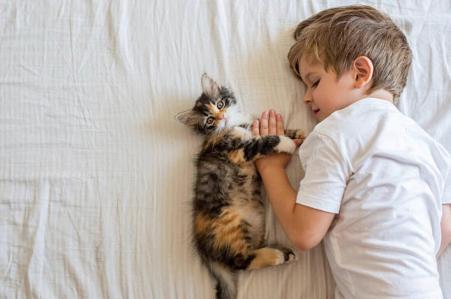 小孩貓睡床上