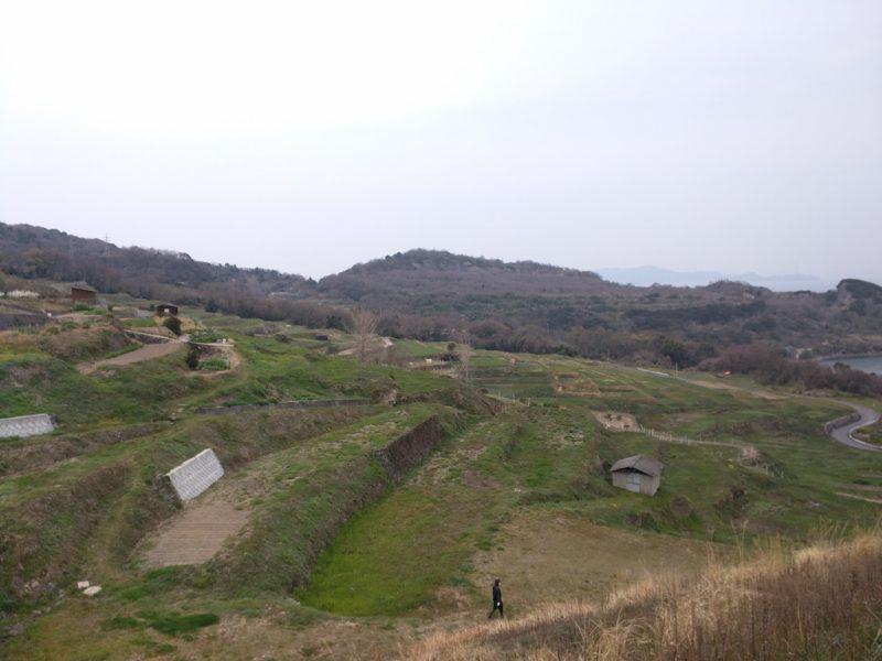 13 - Rizieres en Terrasse sur Teshima