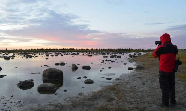Underground vegetation enhances the colors of sunrise, on walks made at dawn, following the moose trail Photo: Cristina Massari / O Globo