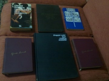 Ćopić, Babelj, Robins, Novi Zavjet … (po knjizi)