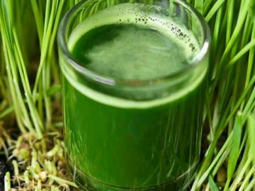 Hladno cijedjeni sok od spelte i mladog jecma iz organskog uzgoja