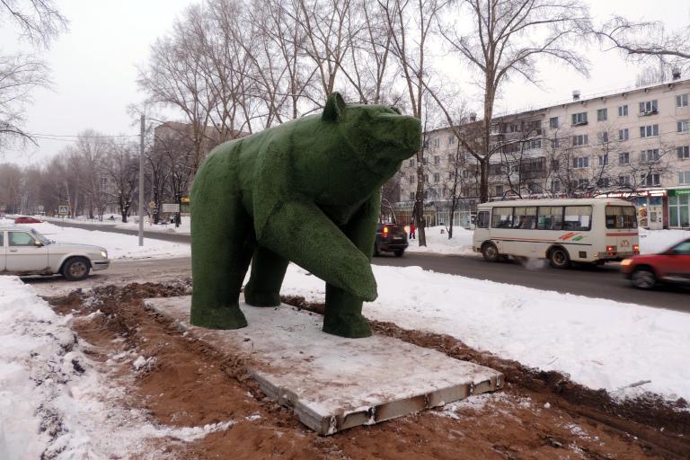 На одной из чайковских улиц замечены медведь и чайка