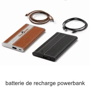 batterie recharge powerbank