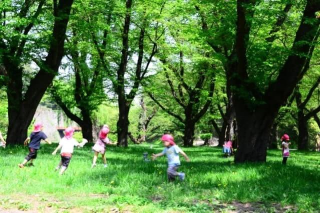 公園で遊ぶ園児たち