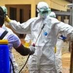 Ebola disease control officials