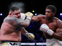 Andy Ruiz Jr and Anthony Joshua fight