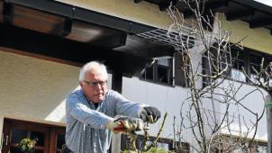 Der Rosenschnitt braucht etwas Übung, ist aber auch kein Hexenwerk: Klaus Mächler weiß, wie's geht. Als Vorsitzender des Pfaffenhofener Obst- und Gartenbauvereins gibt er sein Wissen in Schnittkursen gerne weiter. - Foto: Straßer