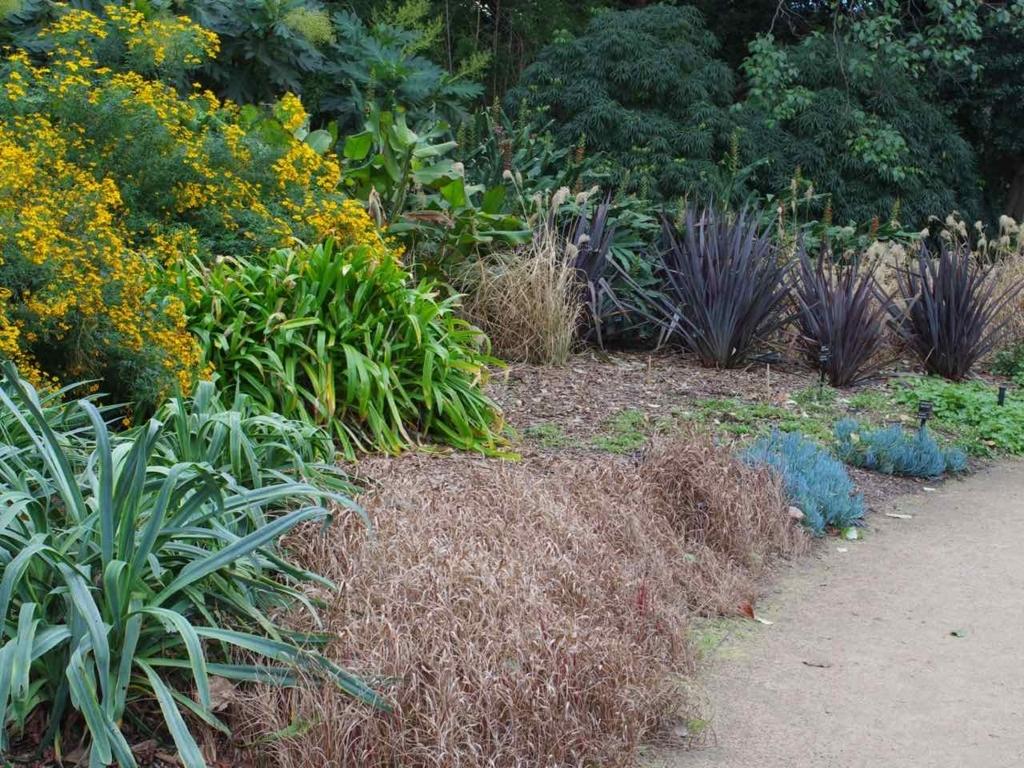 王立植物園@メルボルン:Royal Botanic Gardens Victoria