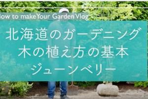 【Youtube】北海道のガーデニング、木の植え方の基本、ジューンベリーを例に