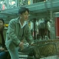 Điềm mật mật 1996: một áng duyên bay