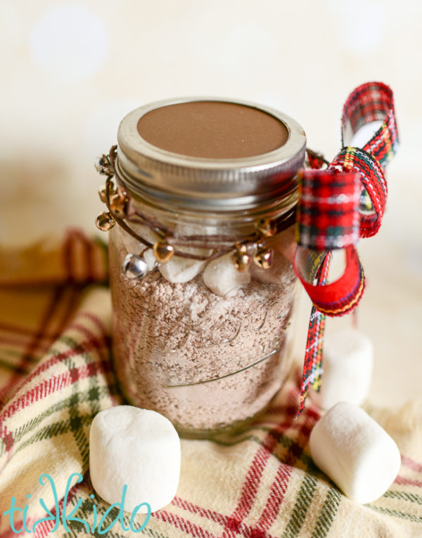 Homemade Hot Cocoa Mix In A Jar - 15 DIY Christmas gifts in a jar for everyone on your list. Mason Jar Christmas Gifts for Coworkers, friends, teachers, and family. These gift ideas are super easy and cheap to make. Homemade recipes for edible gifts. Most of these recipes come with printable labels which makes it super quick to do! Have a stress free Christmas on a budget by making DIY Christmas gifts in 2018!