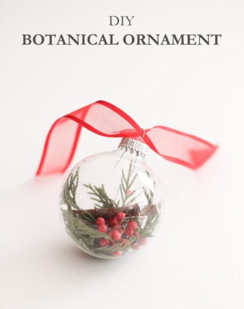 DIY Botanical Ornament by The Crafted Life - 30 Incredible Dollar Store DIY Christmas Decor Ideas. Easy to make decorations that you can do on a small budget. Make beautiful and easy centrepieces, ornaments, candle holders and mason jar crafts. These awesome Dollar Tree DIY Christmas crafts are simple enough to be made with your kids. Just click on this to find out more or pin for later!