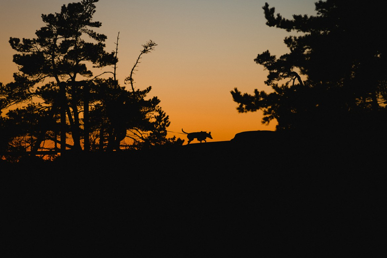 stendorrens-naturreservat-nykoping-37