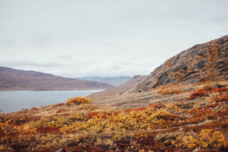 greenland (11)