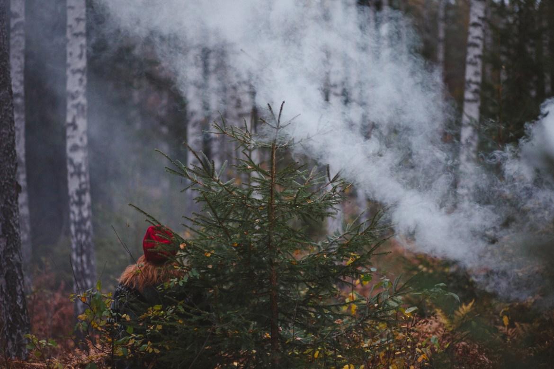 herbie-i-skogen-18