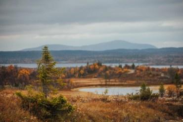 20 höstiga bilder från Hosjöbotten, Jämtland