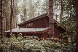 Checka in: Bli ett med naturen djupt inne i Sherwoodskogen - hyr en stuga hos Forest Holidays