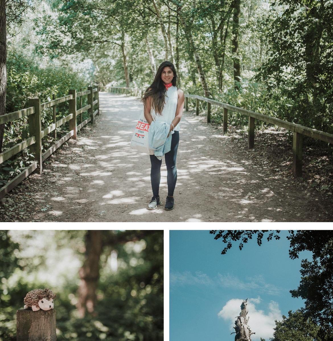 Robin Hood-inspirerad resa till Sherwoodskogen och Nottingham