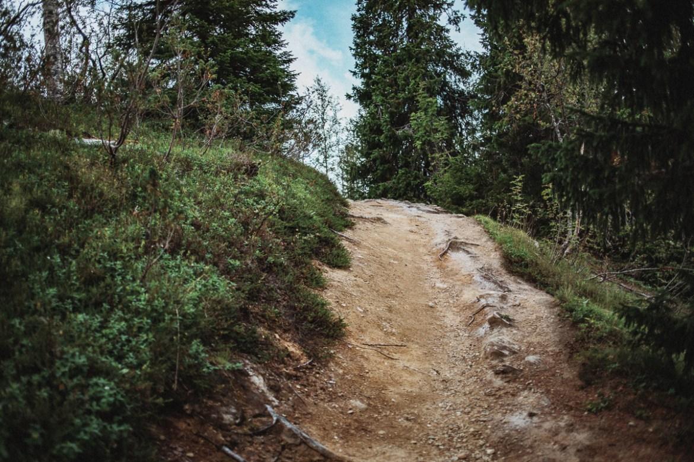 Gaustafallet Vildmarksvägen Sverige