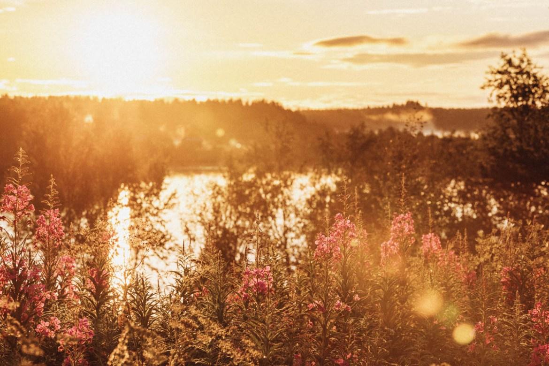 Att vara norrlänning har blivit en del av min identitet, även om jag såklart är så mycket mer än det. På samma sätt som Norrland är mer än vildmarksromantik, djupa skogar och stilla sommarnätter.