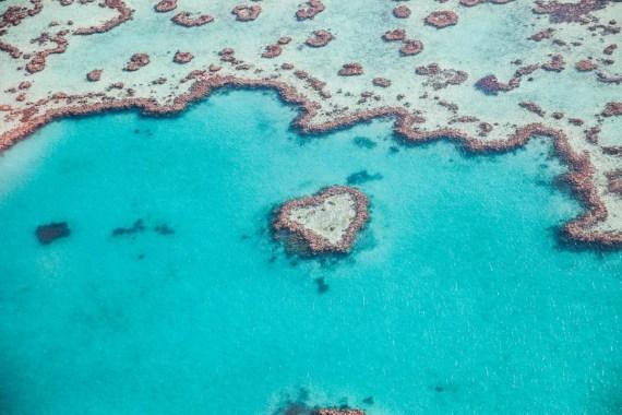 UNESCO Världsarv Stora Barriärrevet Australien