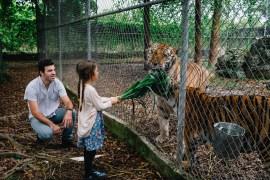 everglades outpost animal sanctuary family travel