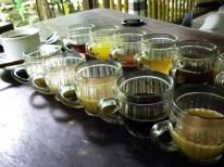 Coffee-Tasting auf einer balineischen Kaffeeplantage