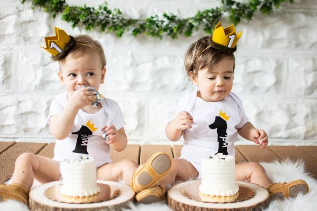 one wild year, wild one birthday party, wild one theme, where the wild things are birthday, cake smash, first birthday theme for twins