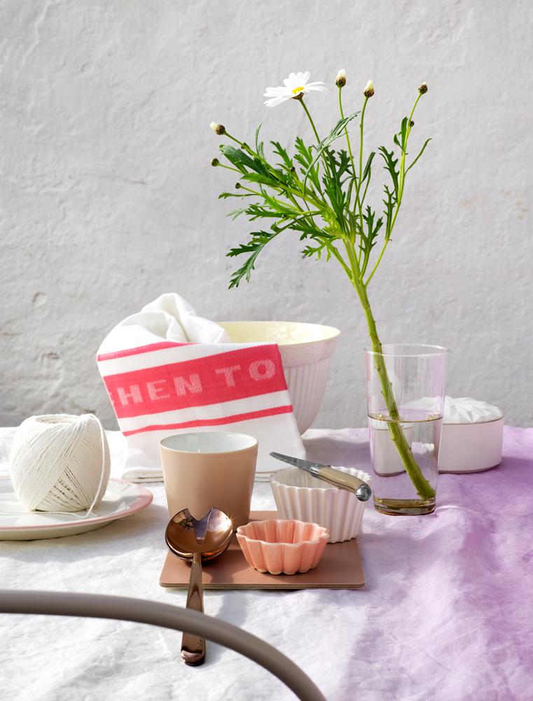 plant life + ohidesignblog