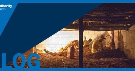 Conquer That Cold, Clammy Crawl Space with Proper Encapsulation and Insulation Projects