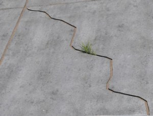 cracks in a slab floor consistent with slab heave in Marietta.