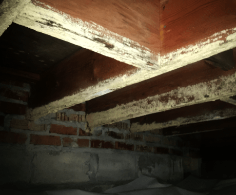 Cleaning Your Crawl Space: The Why, Who & How Much