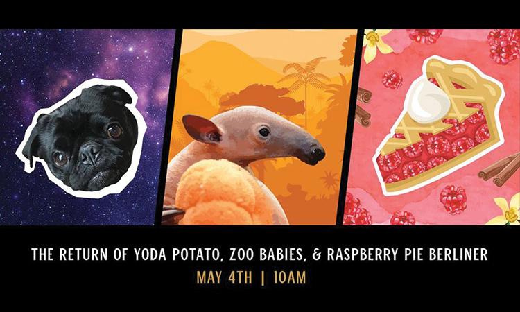 Listermann Brewing - The Return of Yoda Potato, Zoo Babies & Raspberry Pie Berliner, May 4th, 10 a.m.