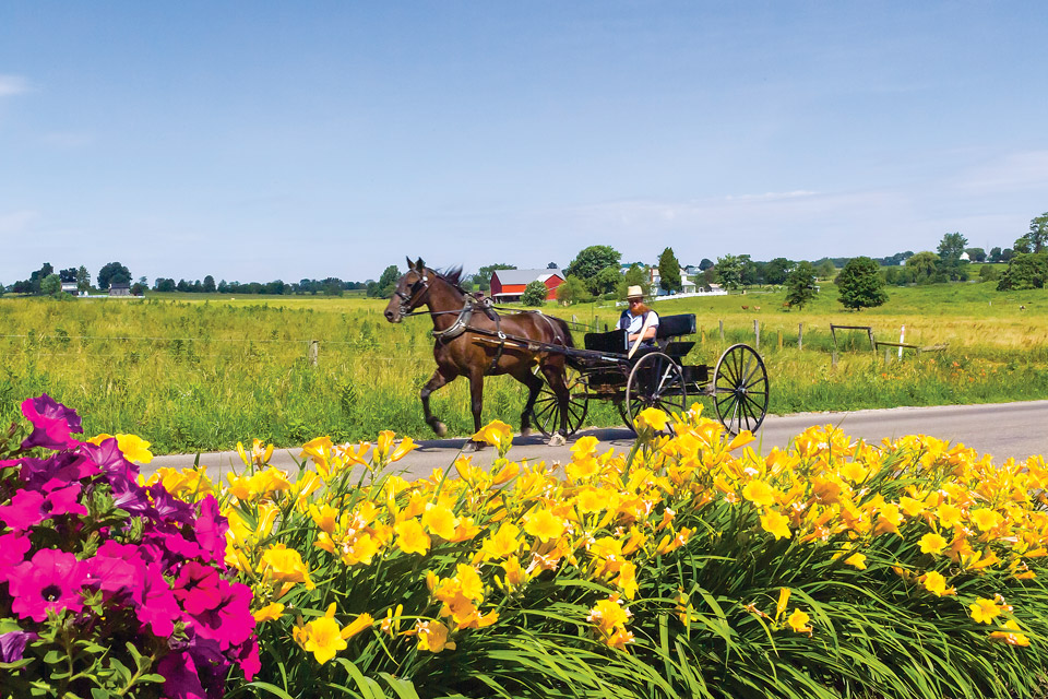 Amish Country (credit: Doyle Yoder)