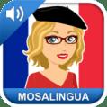 MosaLingua French vocabulary App