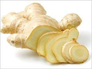 Le rhizome de gingembre