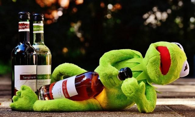 Kermit, sucre et vin