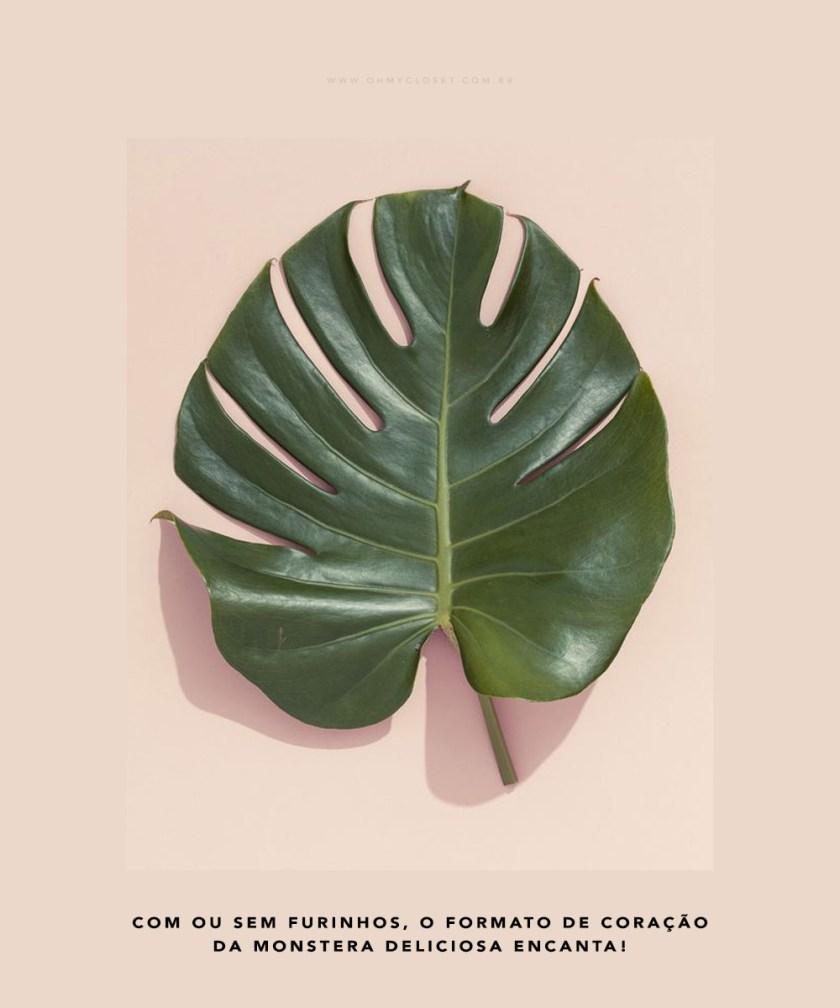Philodendron, Monstera Deliciosa são alguns dos nomes da planta tendência em decor: Costela de Adão. Veja a dica no Oh My Closet, pela influencer Mônica Araújo.