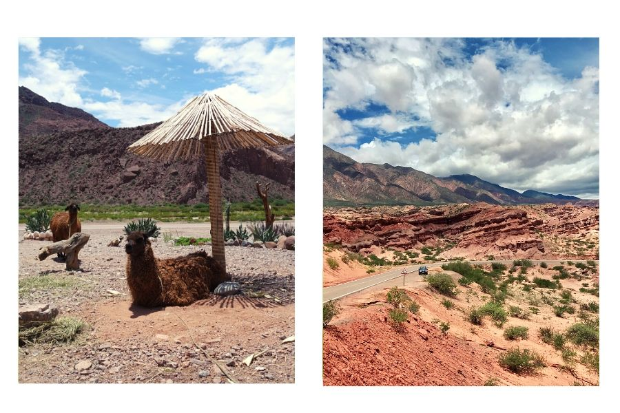 Road trip sur la route de Salta en Argentine